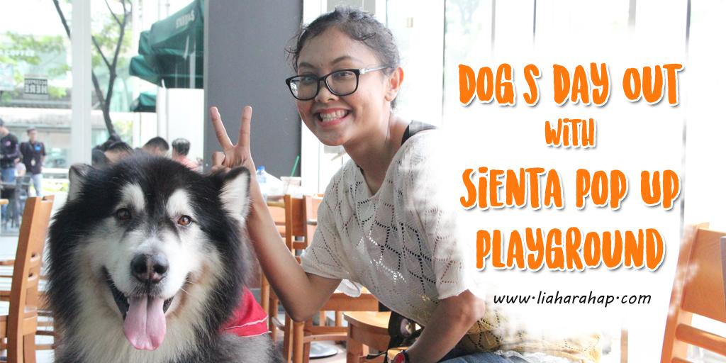 Sienta Pop Up Playground