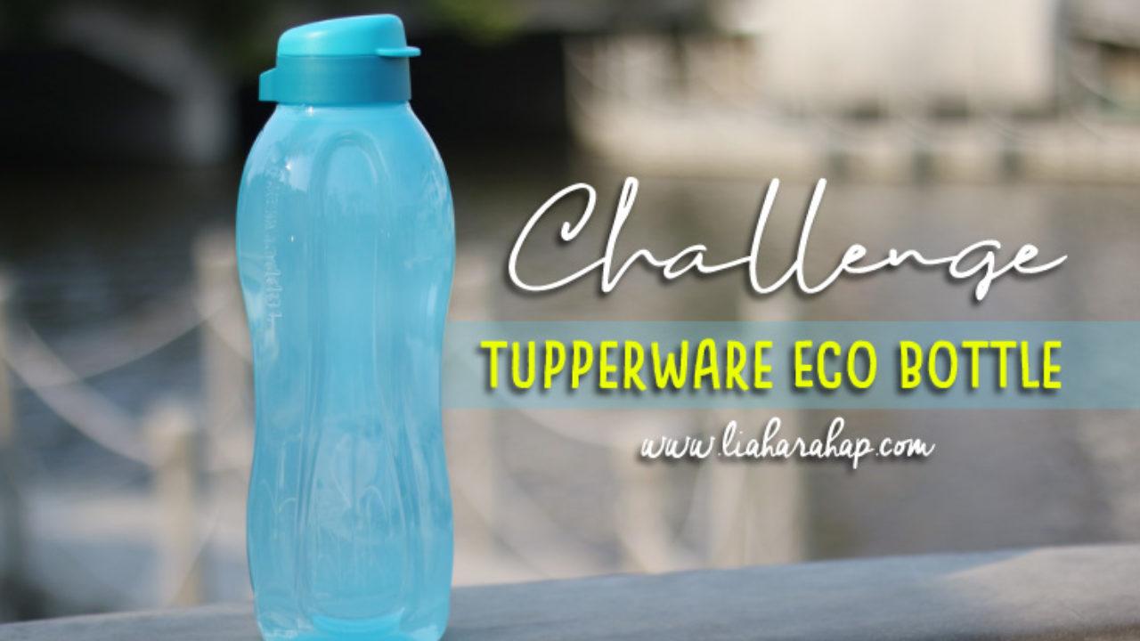 tupperware eco bottle sanggup minum 1 5l sehari lia harahap tupperware eco bottle sanggup minum 1